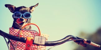 Summer Accessories You Must Own!